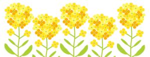 春の入学キャンペーンイメージ